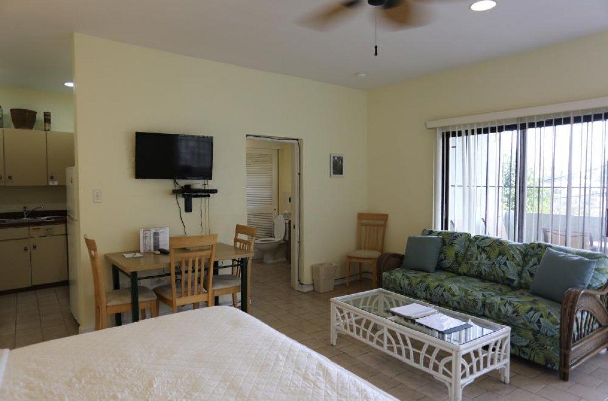 green iguana hotel st thomas usvi wheretostay